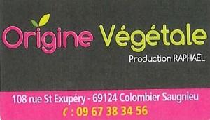 origine vegetale